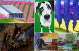 2015 Eastern West Virginia Juried Exhibit Award Winners