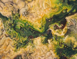 """Microbial Mat"" by Jessie Knirsch; Oil painting on canvas paper; $700 (14inX11inX.5in Framed)"